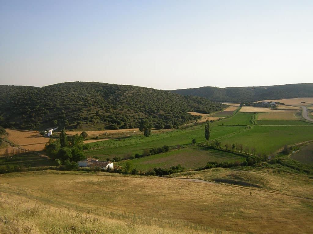 Paisaje de los alrededores del Parque Arqueológico de Segóbriga